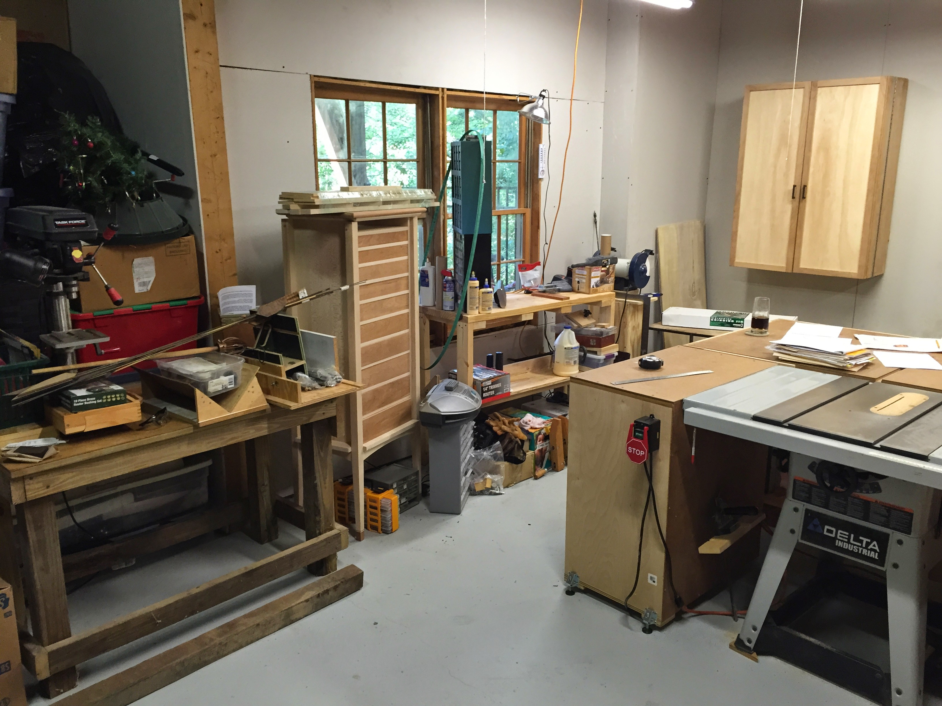 Left side of the shop, tablesaw and carving workbench