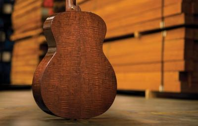 Taylor Guitars emphasize the wood. This is from their promotional materials